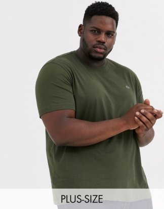 Lacoste - Grünes T-Shirt aus Pima-Baumwolle mit Logo