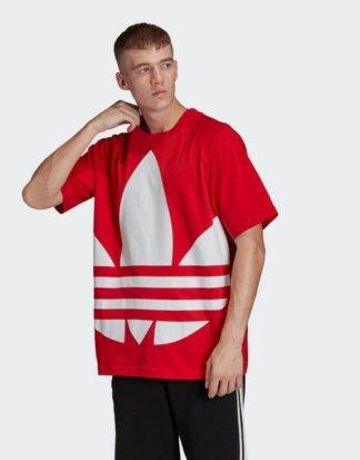 "adidas Originals T-Shirt ""Big Trefoil Boxy T-Shirt"" adicolor"